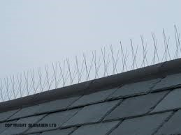 Bird proofing - preventing bird pests by using spikes